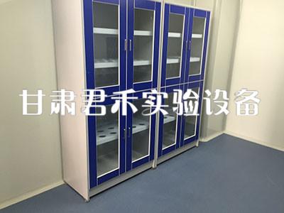 甘肅實驗臺-出售甘肅專業的實驗室臺柜