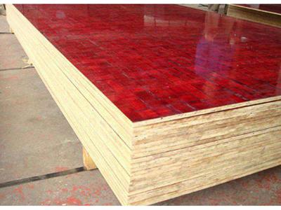甘肃竹胶板-买质量好的竹胶板优选兰州金鸿泰