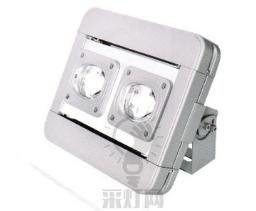 四川LED隧道灯工程灯投光灯大功率100W供应批发-价位合理的投光灯
