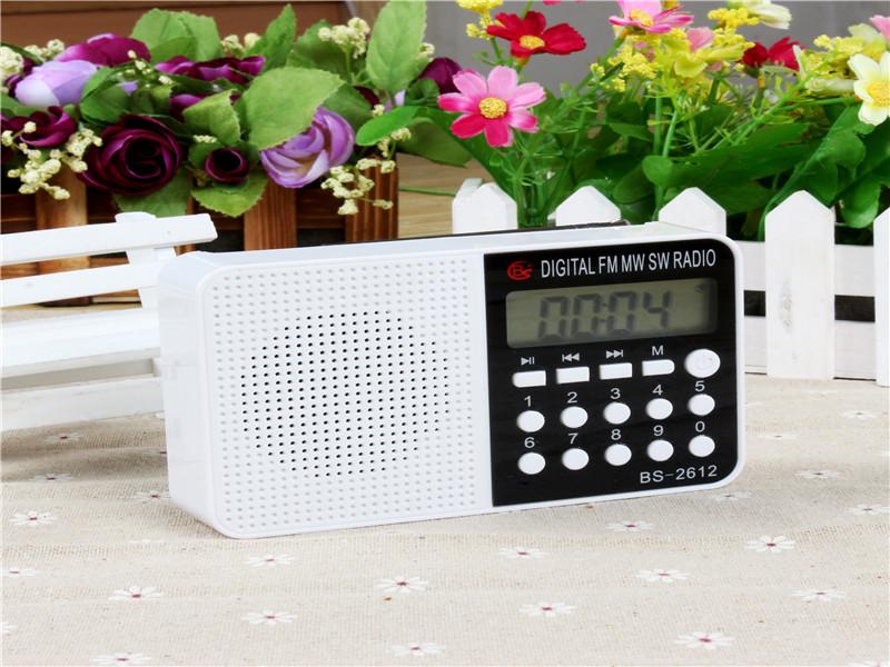 湖北调频收音机|东莞知名的调频收音机供货商