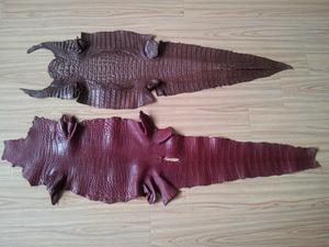 鱷魚錢包-南通具有口碑的鱷魚皮