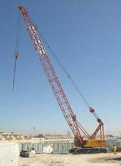 福建劃算的履帶吊|廈門工程機械租賃
