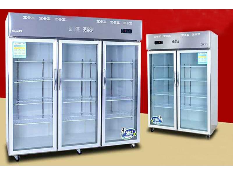 甘肅海鮮柜批發 蘭州銷量好的冷柜,認準蘭州雙贏食品