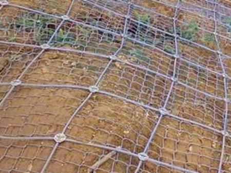 边坡蜘蛛网