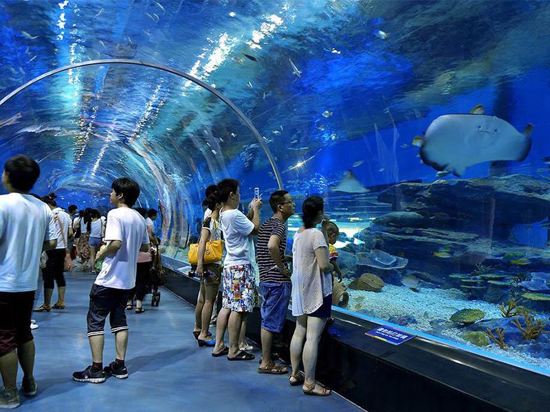 上海海洋馆工程公司-专业海洋馆工程哪家好