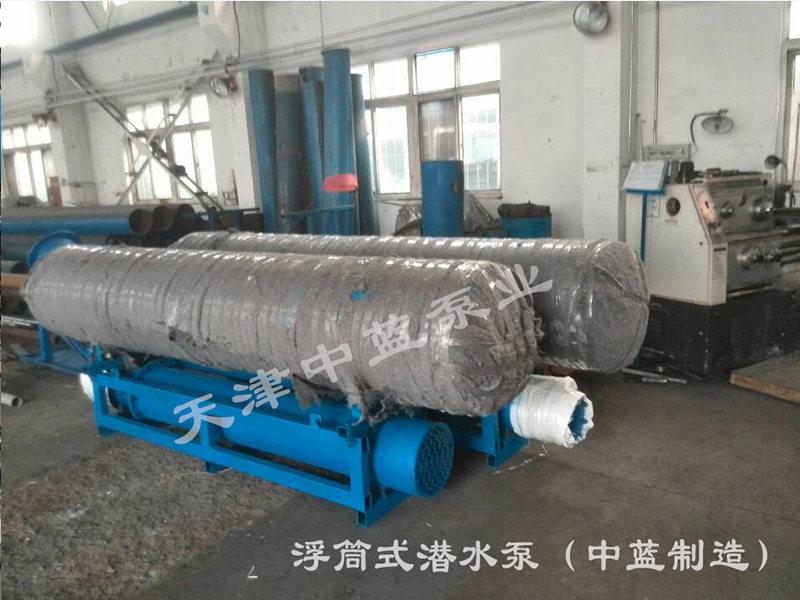 天津中蓝泵业浮筒式水泵怎么样_潜水泵
