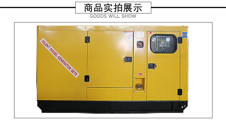 20kw静音永锋盛无刷柴油发电机组|厦门好的山东潍坊开架20kw发电机去哪里买