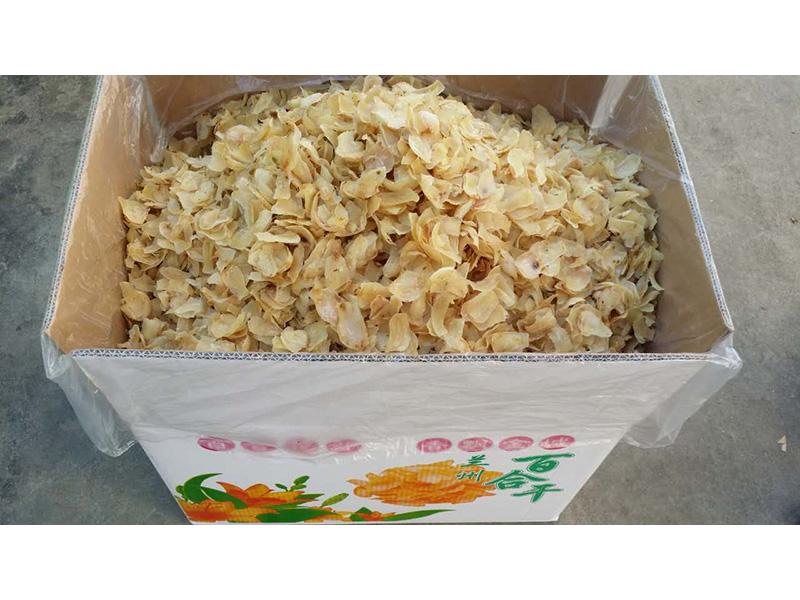 甘肃百合花加工|兰州哪里有优惠的干百合供应
