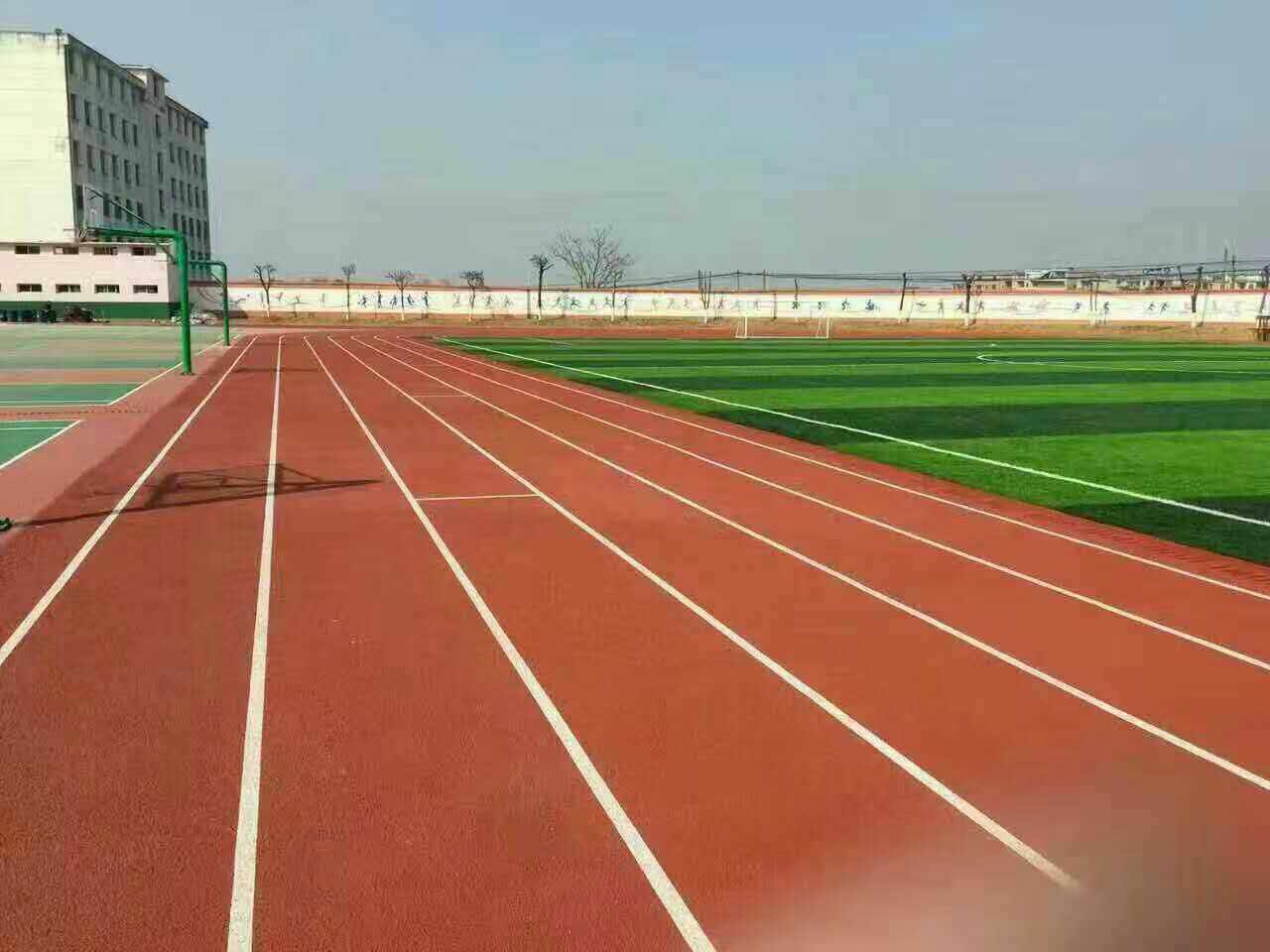 品质优良的全塑型塑胶跑道尽在广州博华体育_塑胶跑道材料多少钱