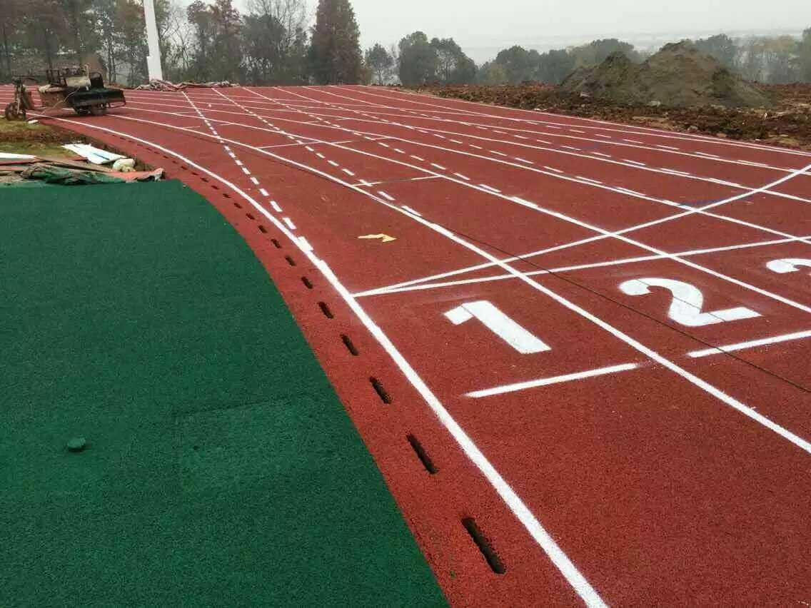 广州博华体育具有口碑的全塑型塑胶跑道出售-复合型塑胶跑道