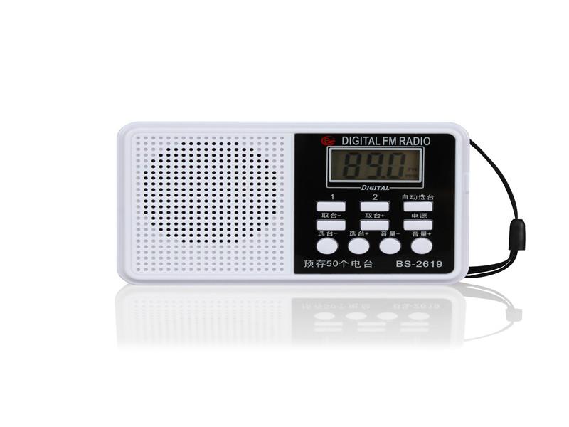 供应直销口碑好的BS-2619调频收音机 广东BS-2619调频收音机