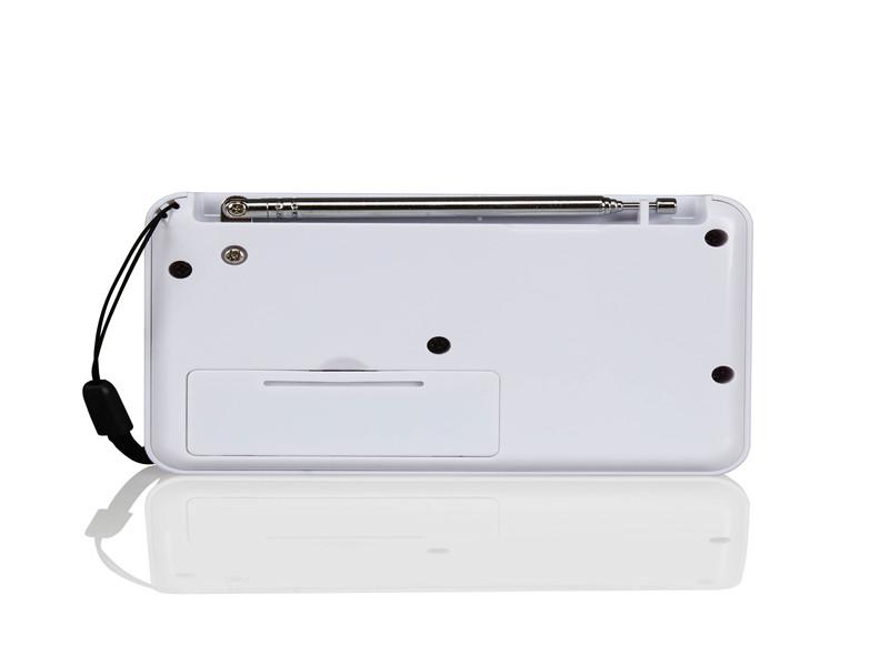 东莞价格合理的BS-2619调频收音机推荐,汕尾调频收音机