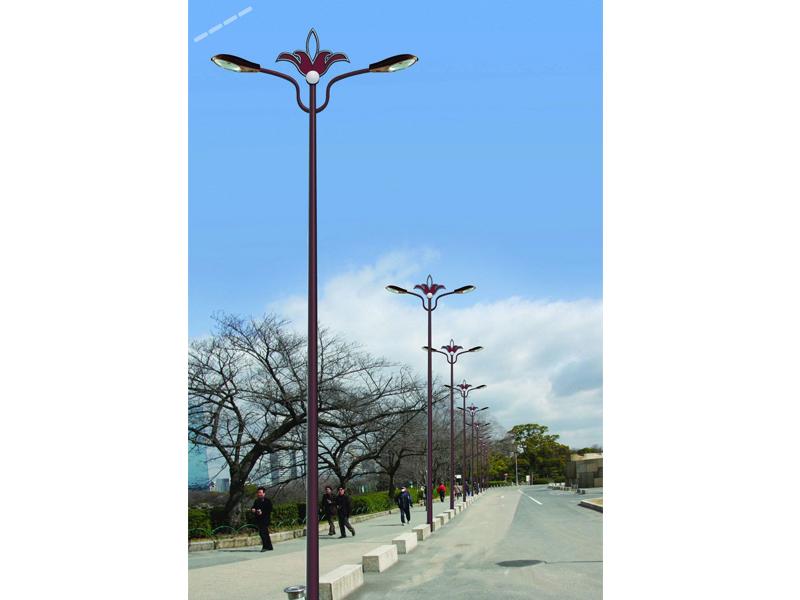 兰州高质量的道路灯【品牌推荐】 专业的道路灯