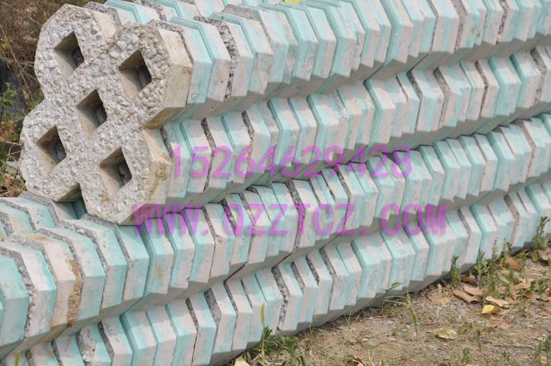 滨州草坪砖生产厂家、草坪砖供应商、中泰彩砖