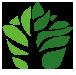 抚顺新宾满族自治县绿野种植专业合作社