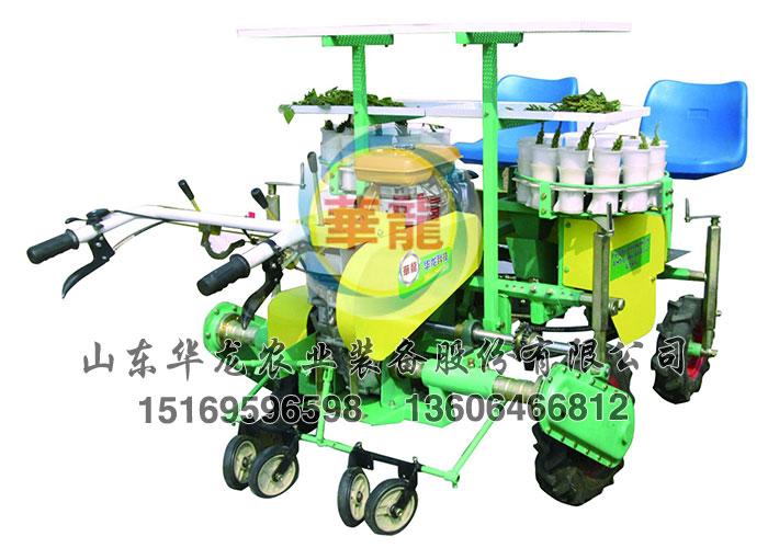 陕西栽植机_华龙农业装备2ZBZ-4A四行自走式移栽机厂家推荐