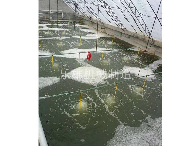 上海哪里有卖得好的微孔曝气增氧设备 纳米增氧管10mm|16mm
