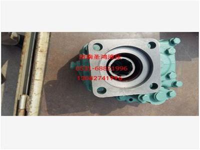山东划算的海沃液压齿轮泵供应-海沃液压齿轮泵厂家