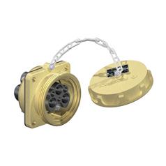 专业的点接触式-口碑好的低压进口插座在深圳哪里可以买到