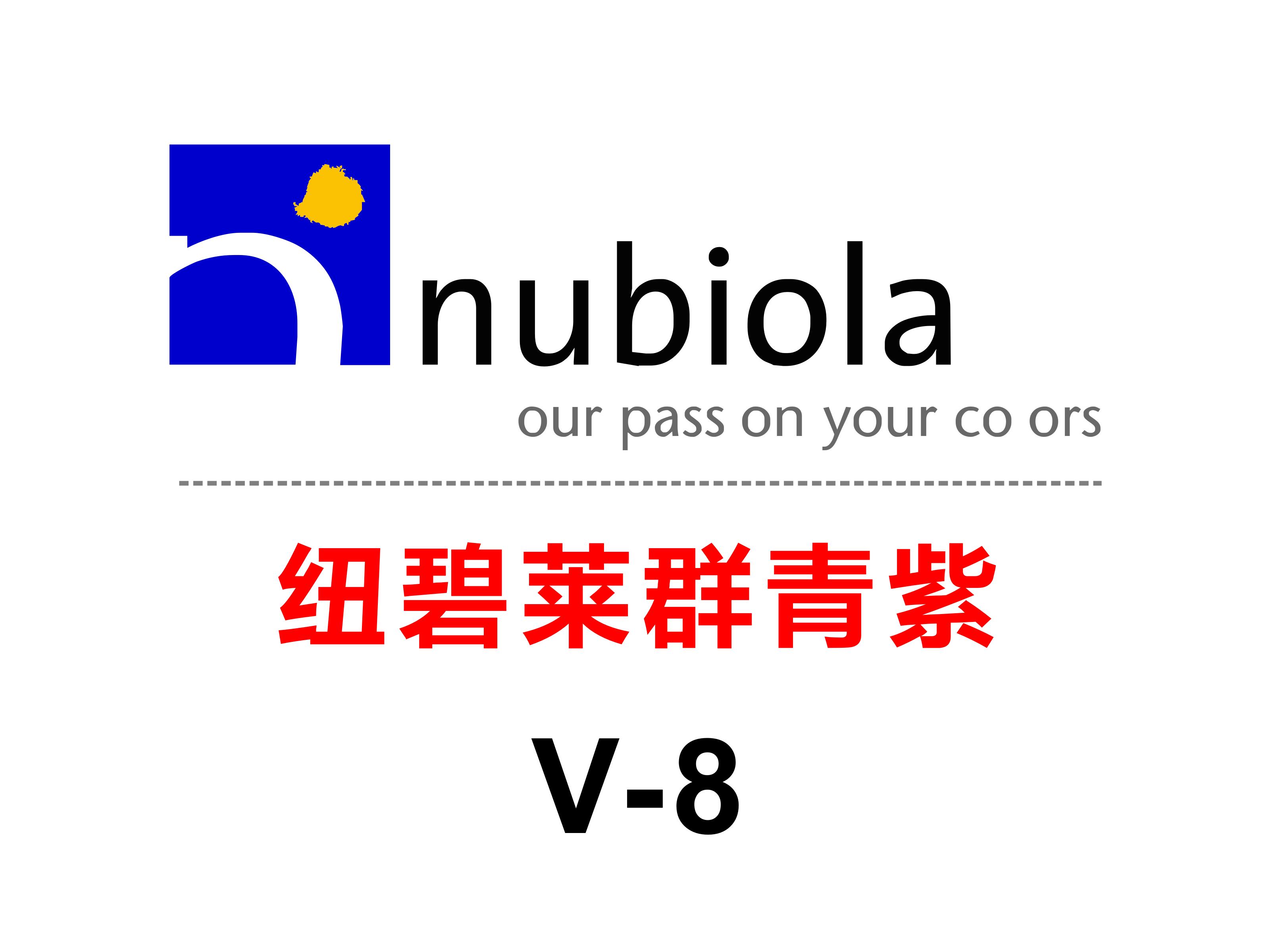 纽碧莱群青紫V-8