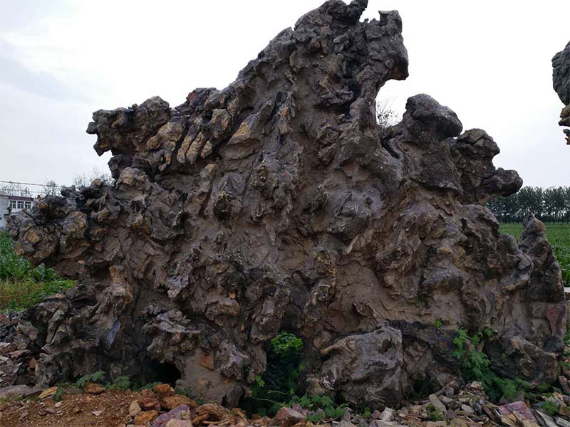 供应安徽价格合理的园林石 海南园林石
