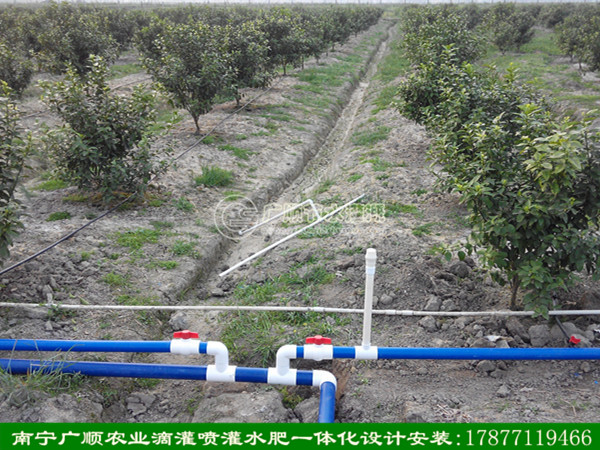 南宁防老化PE管黑管_供应南宁实惠的南宁灌溉管
