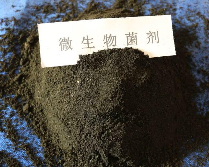 复合微生物菌肥用途-优良复合微生物菌肥上哪买