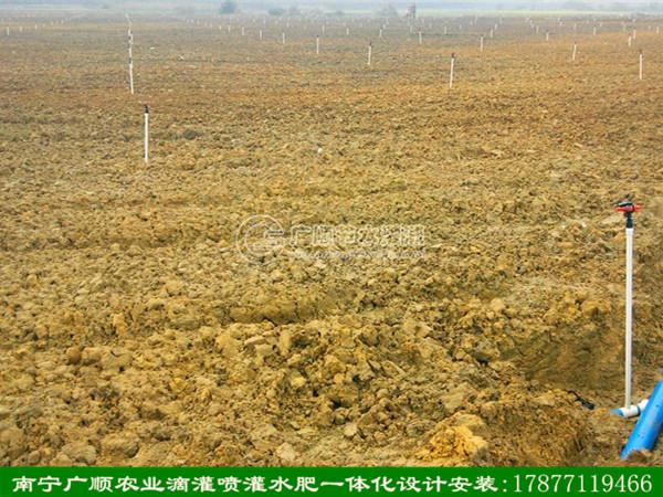 广西喷灌公司喷灌安装_供应广西口碑好的农业喷灌安装技术机械