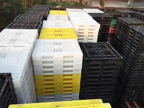 提供广东物超所值的塑料托盘胶筐回收|东莞塑料胶箱回收批发
