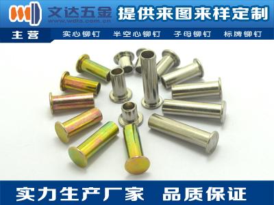 在哪容易買到優惠的鋁合窗撐連桿半空心鉚釘 平頭半空心鐵質滑撐鉚釘