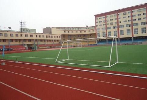 迪特克_优质排球场人造草坪供应商-承德排球场人造草坪