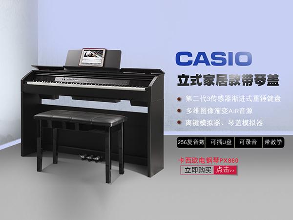 克诺伯钢琴-信誉好的成人钢琴培训哪里有