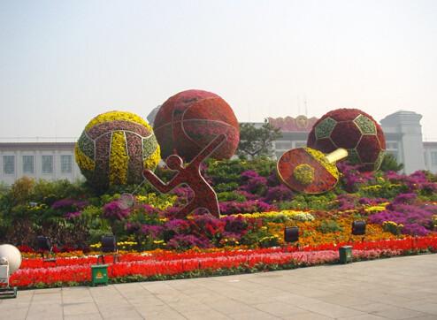 立體花卉設計_想要優惠的立體花卉就來偉一花卉苗木