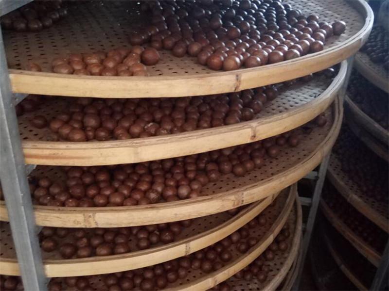 广西澳洲坚果批发厂家_知名的澳洲坚果供应商_广西德仁生物科技