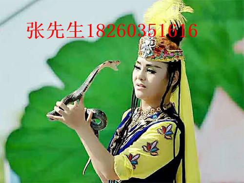 可信赖的眼睛蛇表演公司-江苏眼镜蛇表演