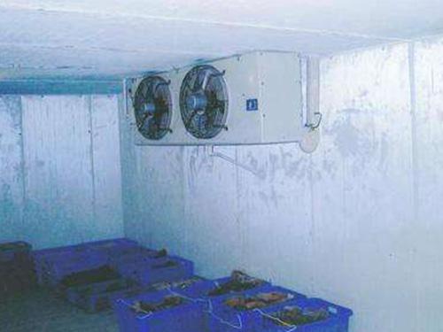廣東急凍冷庫安裝-價位合理的急凍冷庫供銷