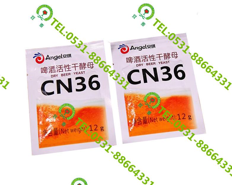 爆销国产安琪CN36酵母诺丁汉酵母 济南价格合理的国产安琪CN36酵母