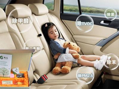 北京汽车除甲醛_哪里有销售汽车除甲醛消毒剂
