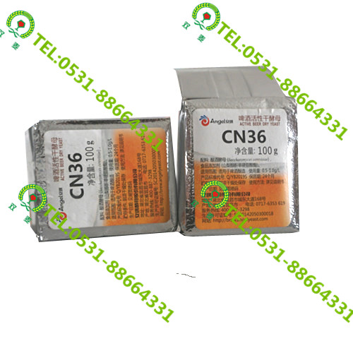 訂購安琪CN36酵母 在哪能買到優惠的安琪CN36酵母