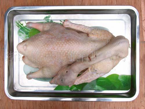 鹅肥肝酱做法-海兰德食品高品质山东白条鹅供应