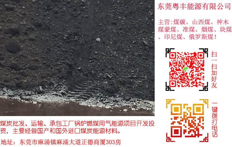 东莞提供好的煤炭-湛江煤炭价格
