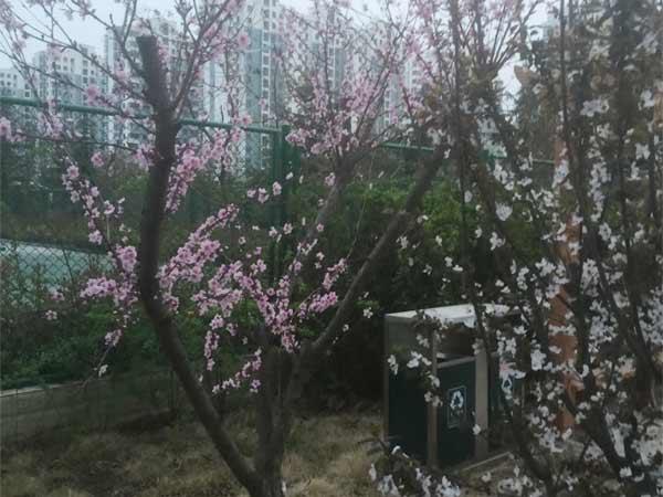 园林景观工程施工优选上海快3官网工程_园林景观工程