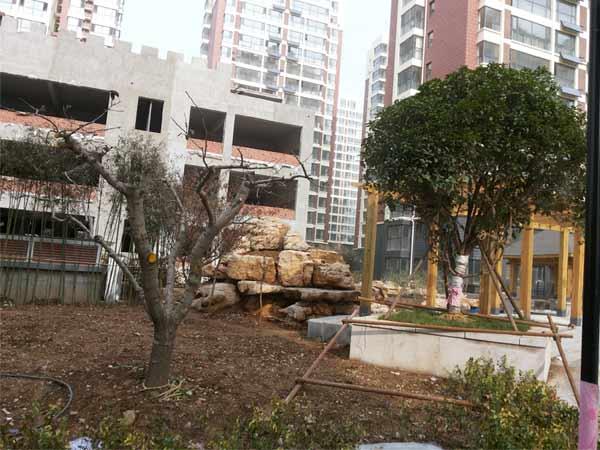 山东的园林绿化养护推荐_园林养护公司