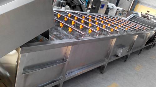 洗菜機輸送設備-專業的清洗輸送設備生產廠家