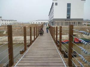 获嘉豫龙腾飞游乐设施厂_吊桥品质优良|吊桥安装