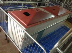 有品质的新式猪用保温箱哪里有供应|新式猪用保温箱