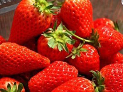 甜宝草莓——价格合理的红颜草莓【推荐】