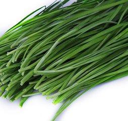 泰安有机韭菜专业供应,泰安韭菜的价格