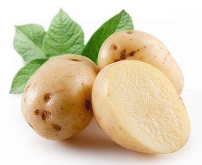 土豆山东万泰蔬菜专业供应 土豆厂家
