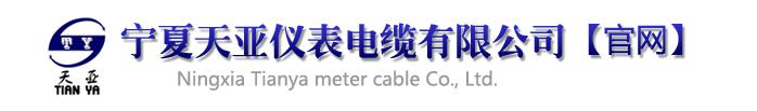 宁夏天亚仪表电缆足球365bet_365bet怎么串_365bet体育皇冠